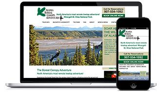Alaska Boreal Canopy Adventures