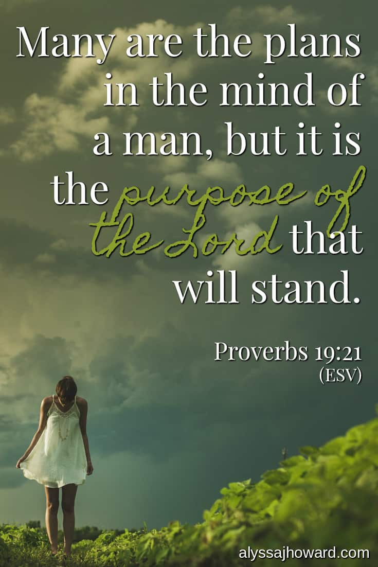 Many are the plans in the mind of a man, but it is the purpose of the Lord that will stand. - Proverbs 19:21