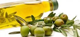الزيتون سبب في انخفاض خطر الإصابة بمرض ألزهايمر