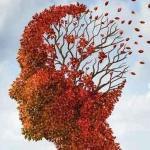 FOTOLIA Las neuronas son la base de la memoria. En un envejecimiento saludable, no se reduce mucho el número