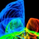 Estudio Alfa: Alzheimer y Familias. Gran proyecto de investigación