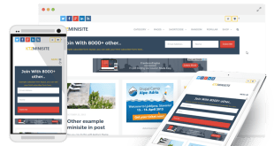 minisite wp theme review