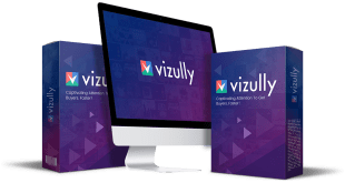 Vizully Review