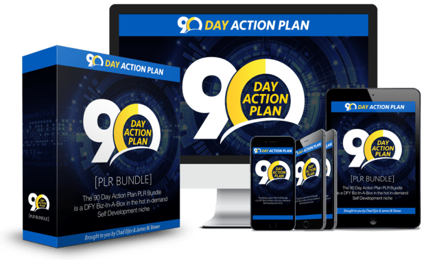90 Day Action Plan Review