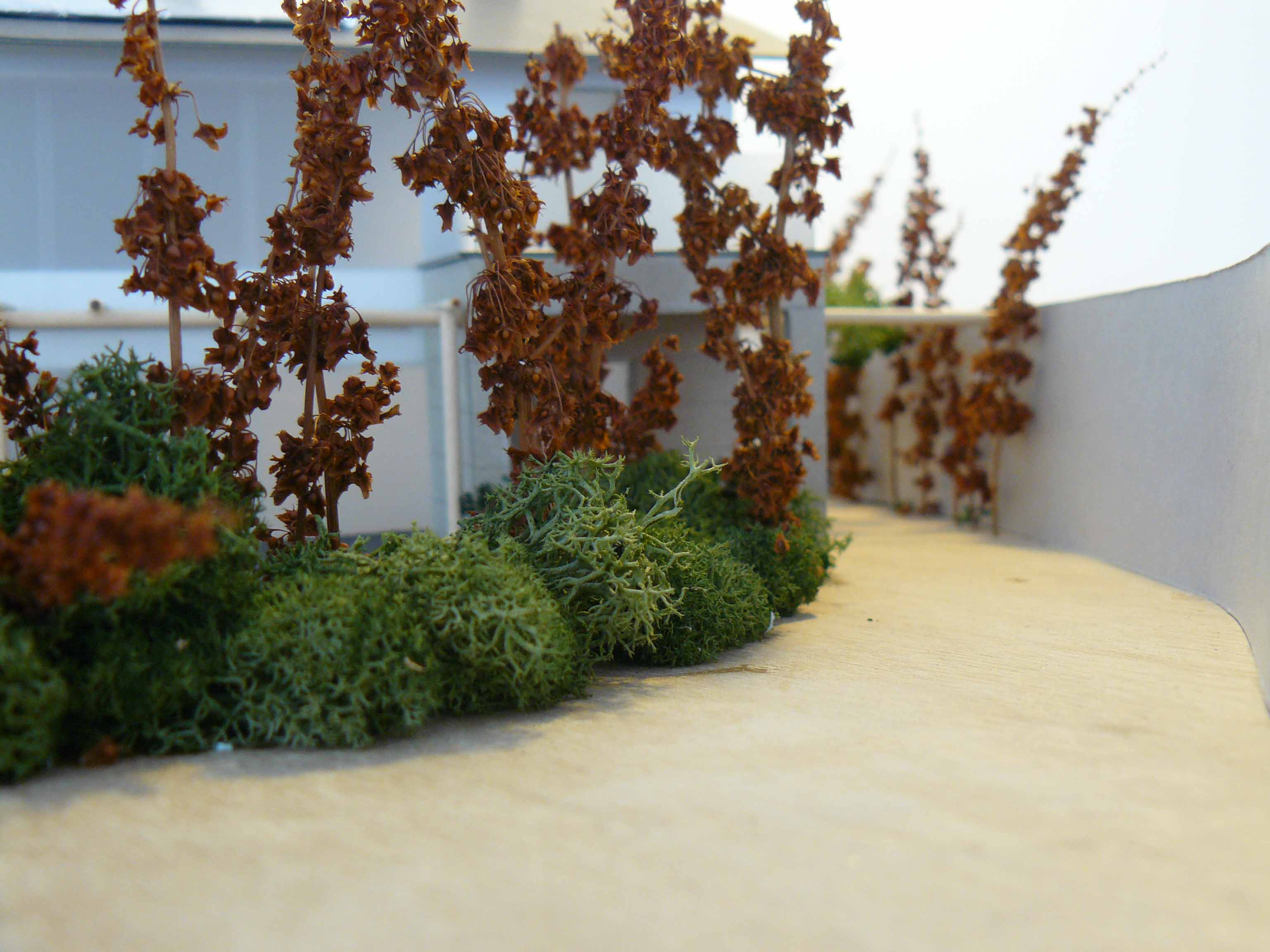 Casa Sostenible en Catoira6