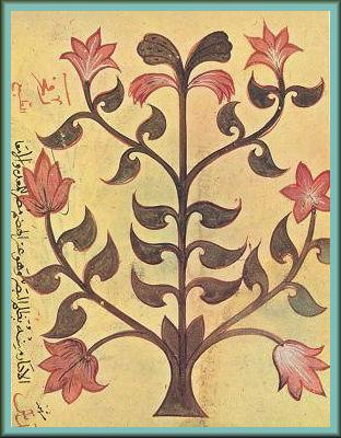 Dioscorides_lentil_Materia Medica of Dioscorides Iraq or Syria 1229