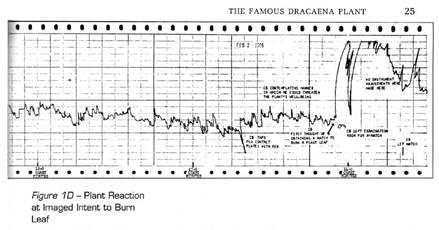 Grafico di Backster