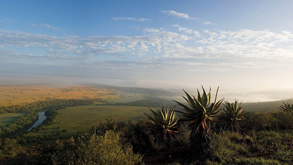 Carnarvon Dale Amakhala Game Reserve