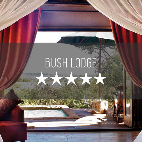 Bush Lodge   Featured Image