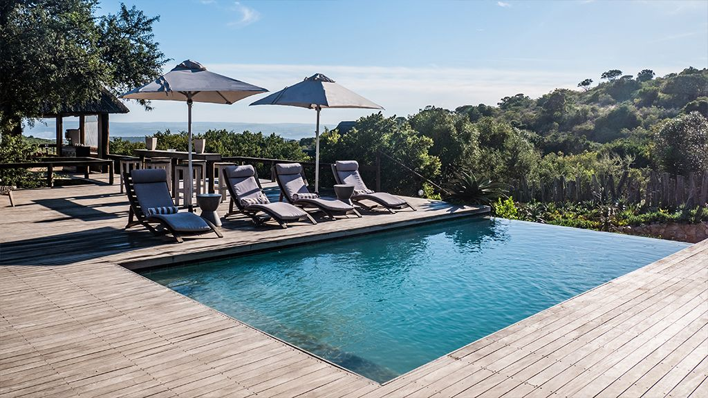 bukela game lodge amakhala swimming deck