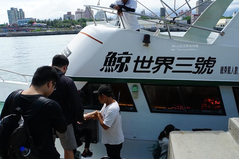台灣好行,瓶鼻海豚,縱谷花蓮線,花蓮港,賞鯨