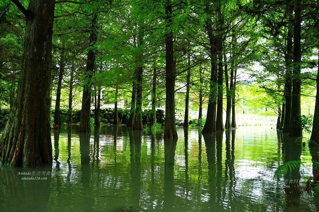 壽豐,夢幻湖,縱谷花蓮,花蓮,豐華再現館,雲山水
