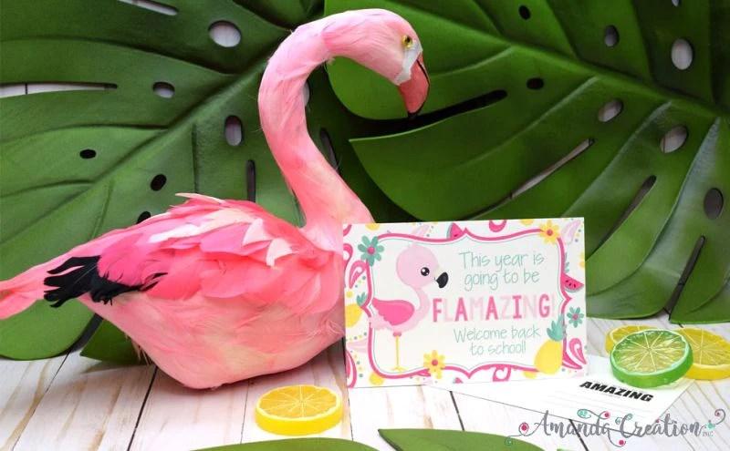 Flamingo Back to School Postcards