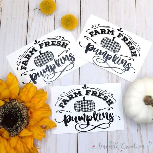 Black & White Plaid Farm Fresh Pumpkins Postcards