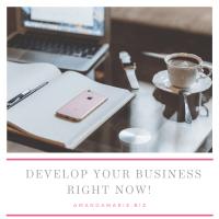 AmandaMarieBiz- Develop your business
