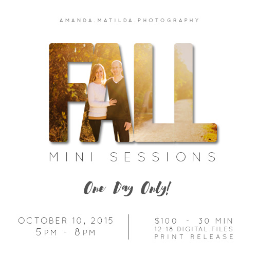 2015 FALL MINIS Grand Junction photographers