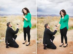 Surprise Proposal Engagement Session | amanda.matilda.photography