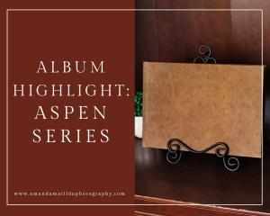 Album Highlight: Aspen Series Album | amanda.matilda.photography