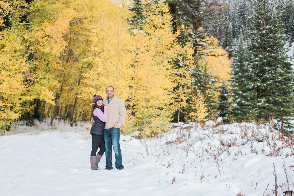 Couple posed by yellow fall aspens and snow covered pines