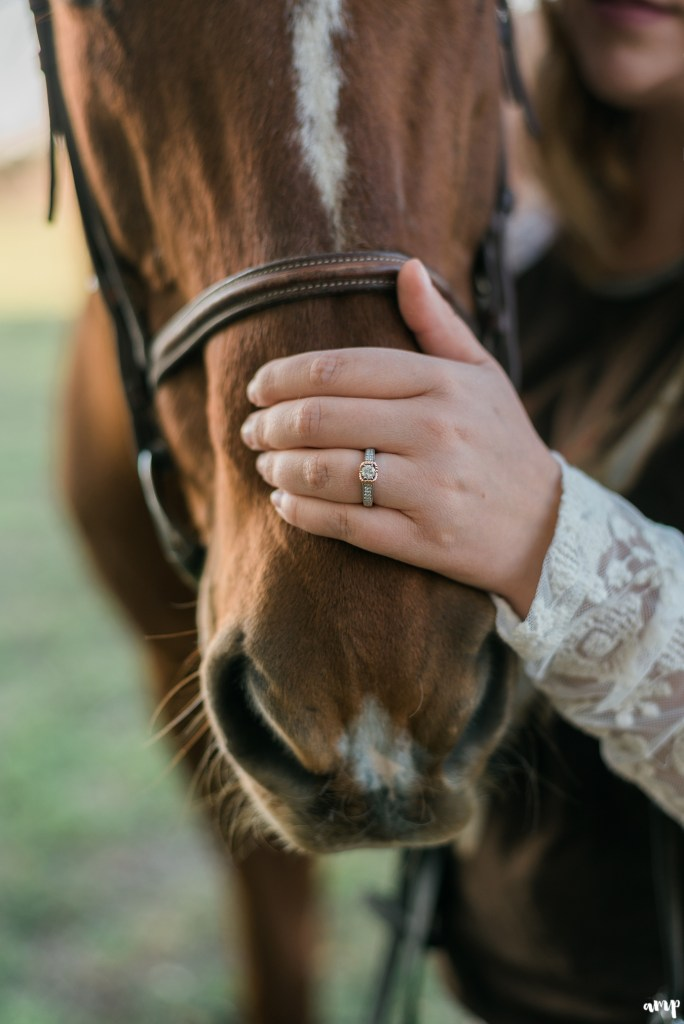 Engagement ring on a horse nose
