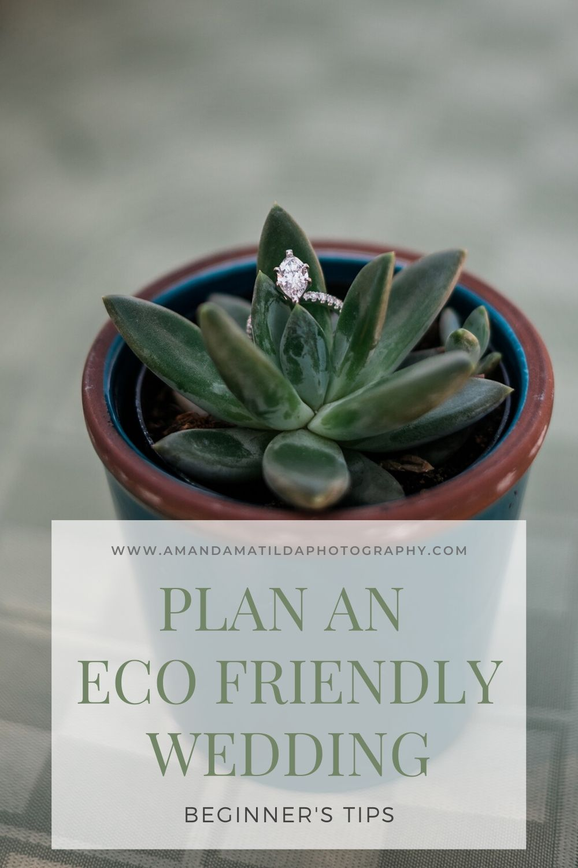 How to Plan an Eco Friendly Wedding | Amanda Matilda Photography