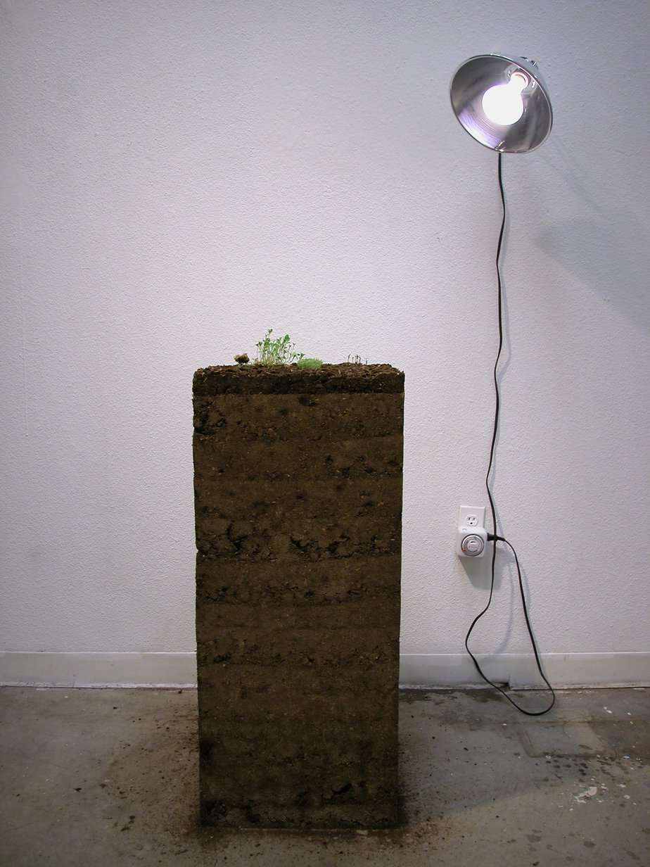 Cube of soil with sprouts on top, in the studio.