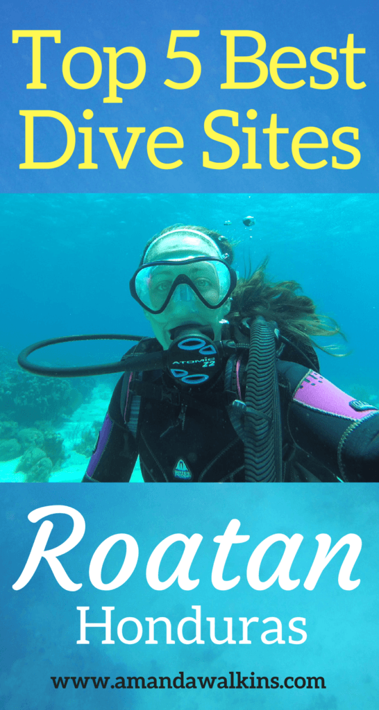 Top 5 dive sites in Roatan chosen by the professionals who live there.