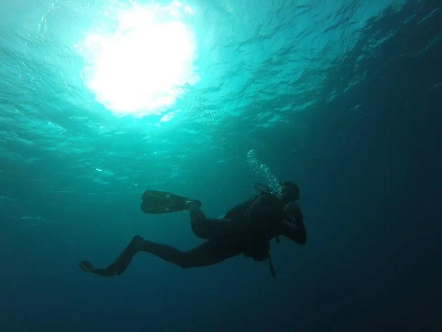 Roatan best dive sites