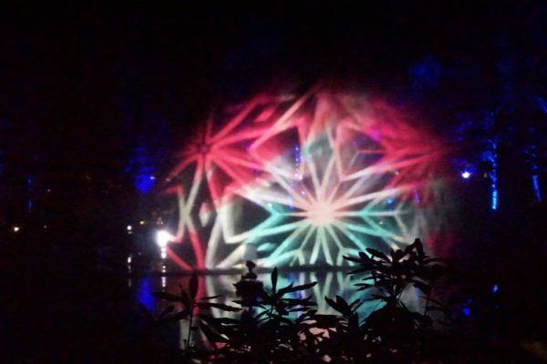 Enchanted Forest water display 2016