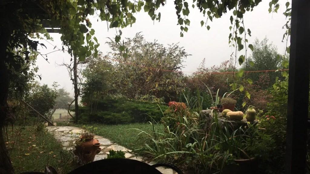 Garden view with mist blocking the mountains in Asturias Spain