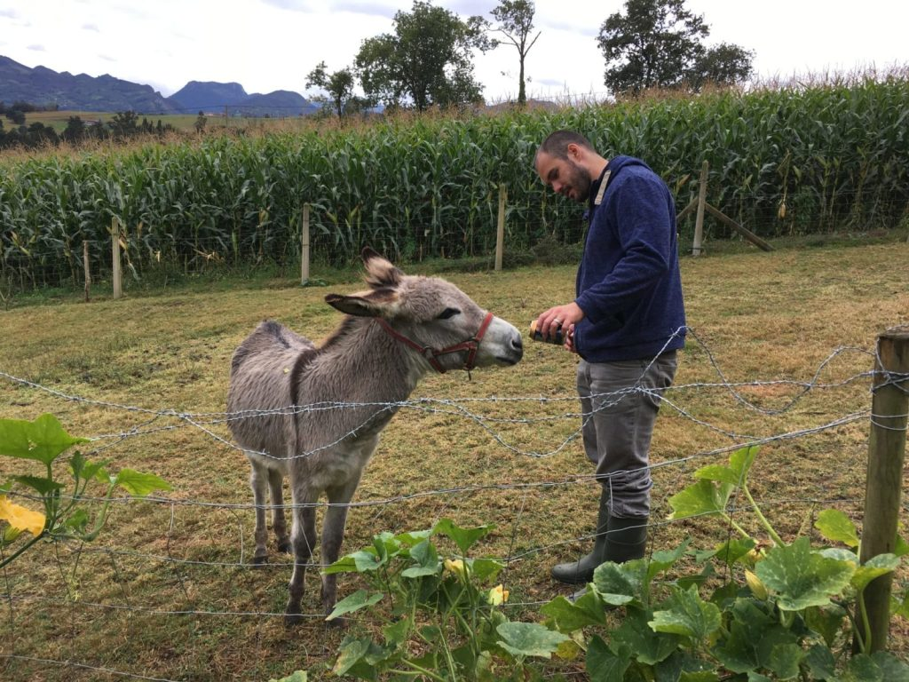 Jonathan Clarkin sharing a drink with a donkey