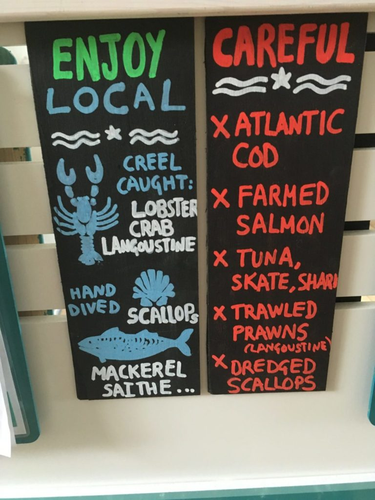 local fish guide for what to eat and what to avoid for sustainability