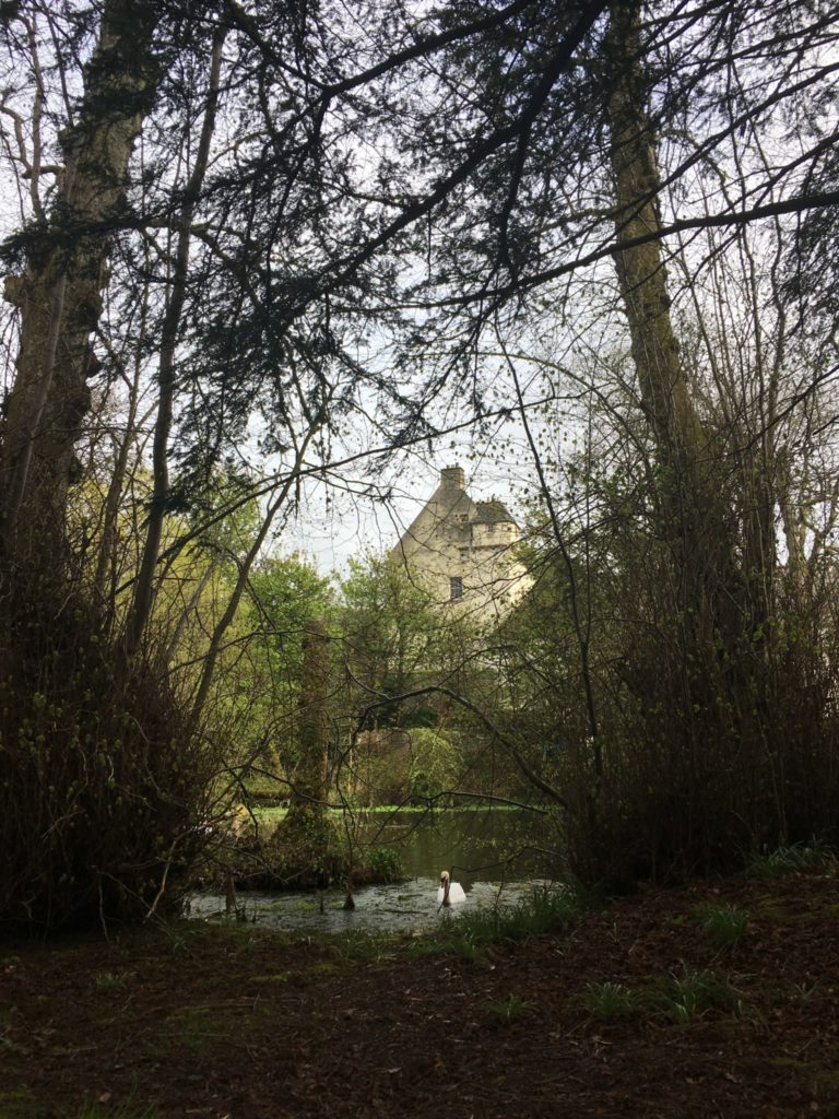 Day trips from Edinburgh to the Scottish Borders -- Traquair House grounds and woods with a swan swimming toward us
