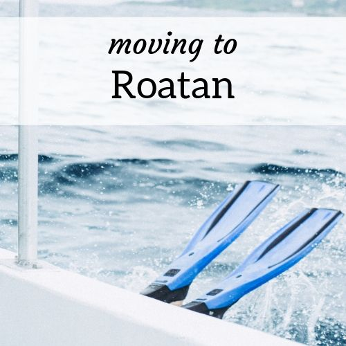 square header image for moving to Roatan as an expat
