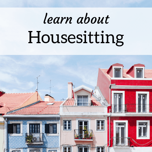 header image for learning about house sitting