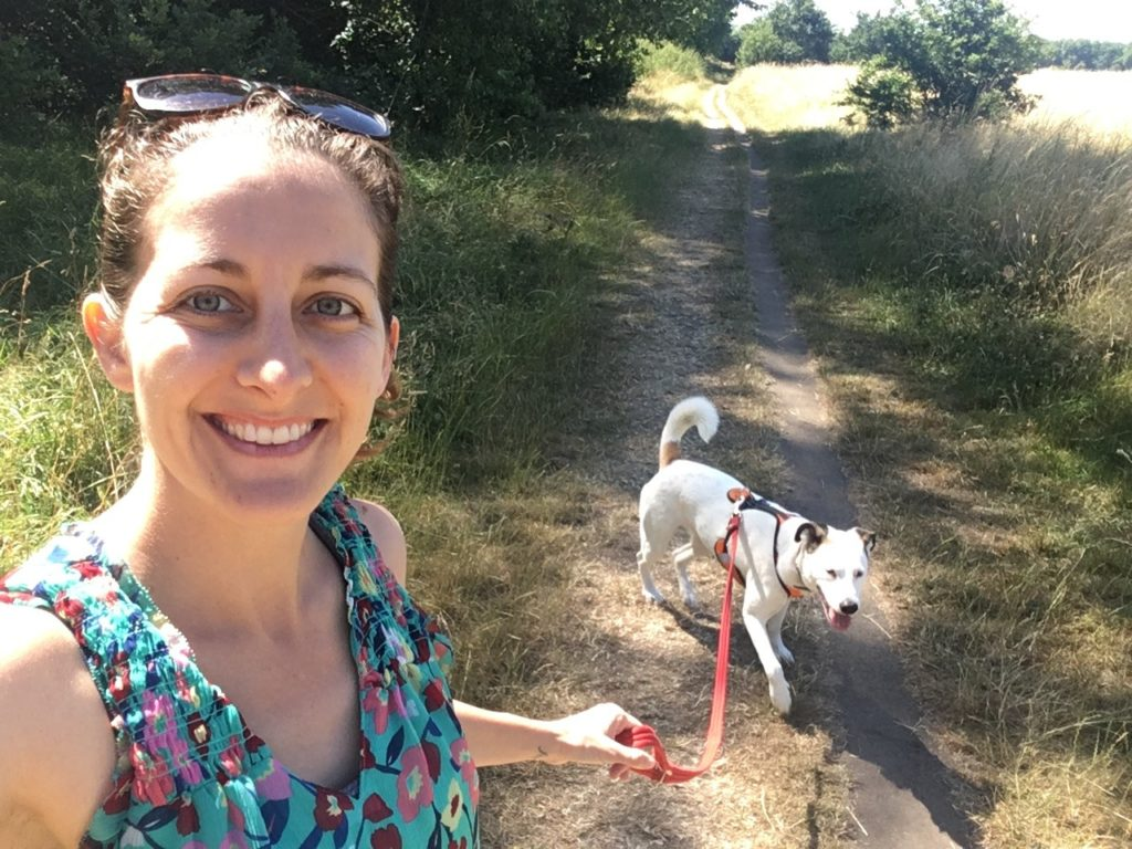 Amanda Walkins dog sitting and walking in London