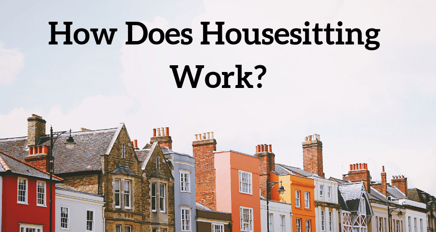header image for housesitting with TrustedHousesitters information