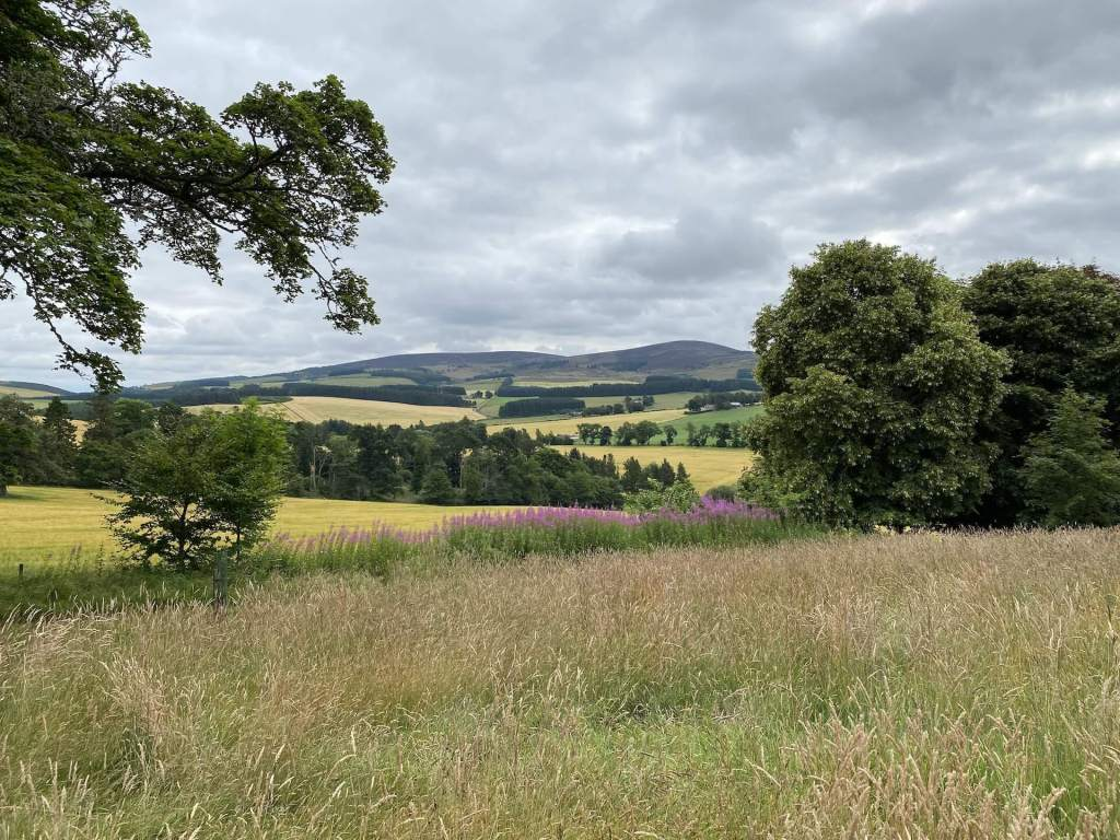 Rural view in Aberdeenshire with rolling farm fields and hills beyond
