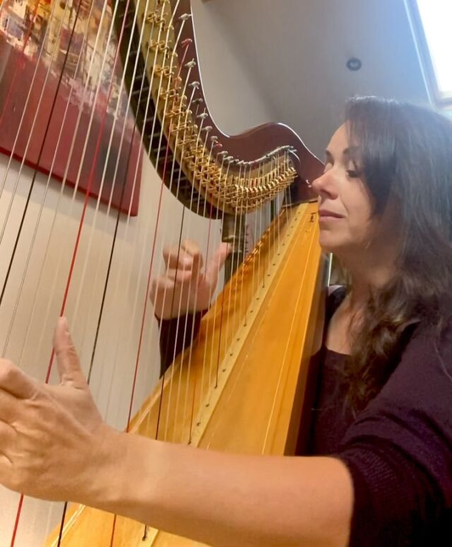 New term, new album (recording in a few weeks), new practise regime, new me! Let's go! Side stepping (which involves a bit of foot work)hours of playing and recording to find that inner voice and that one line you are happy with. Love it! Happy September everyone❤️@jazzmanrecords #jazz#jazzharp#harpjazz#music@harpcolumn @harpcolumnmusic#jazzperfromance#recording#harp#harpist#musician#dorothyashby#alicecoltrane#improvising#jazzvideo#practicalharpist#livemusic#creativity#jazzmusic#harfe#newmusic #jazzuk #spritualjazz #latin #latinmusic