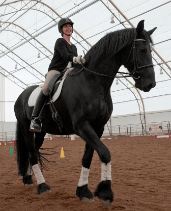 Equine Assisted Therapy by Jill Cantor Lee