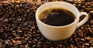 como elegir un buen cafe