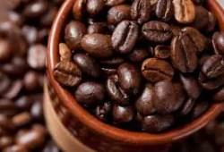 características del café ecuatoriano