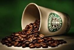 4 fundamentos del café según Starbucks