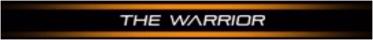 P90X3 Classic The Warrior
