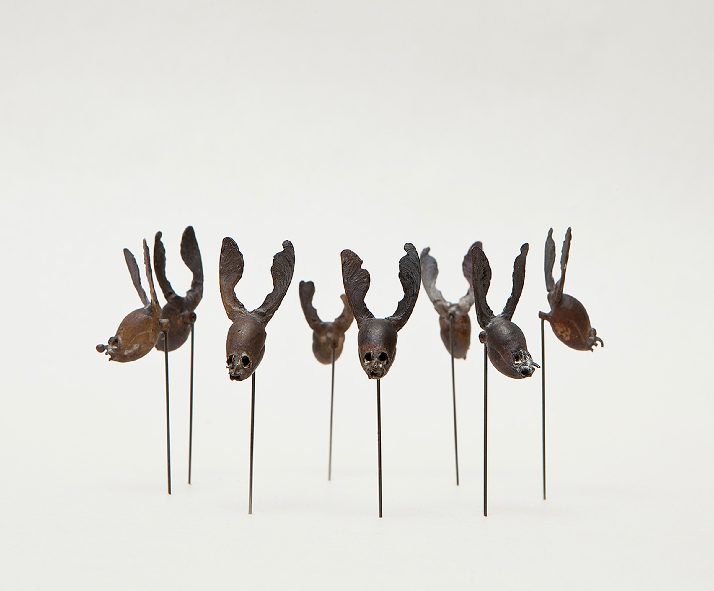 "Broche Pin "" Wolperdinger "" Attai Chen. Art jewelry. Joyas de diseño"