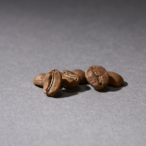 非洲肯亞AA咖啡豆(230g)