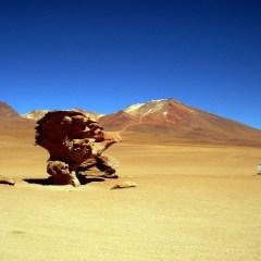 Magie de l'Altiplano