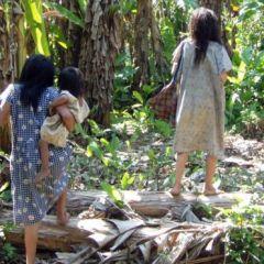 Los secretos de los indígenas tsimané, el pueblo originario de Bolivia que tiene las arterias más sanas del mundo