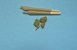 weed-medical marijuana