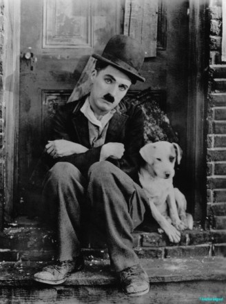 a ragged looking man in ill fitting clothes sits on a doorstep with his companion mongrel dog